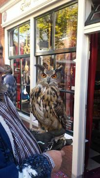 foto opening Triskal shop u'Mtata